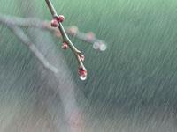 بارون - باران - زمستان